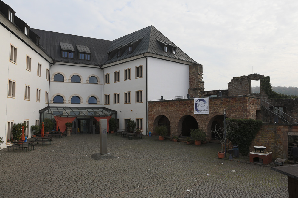 Burg_Altleiningen